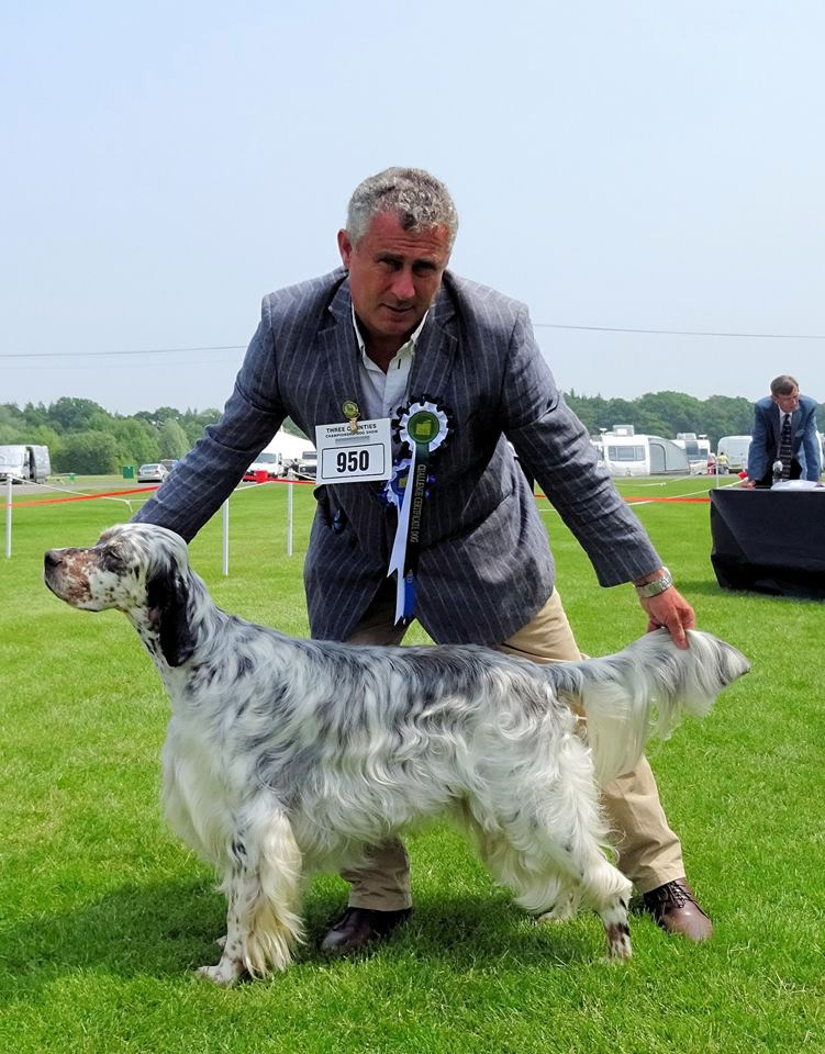 CC & Best of Breed at Three Counties 2016